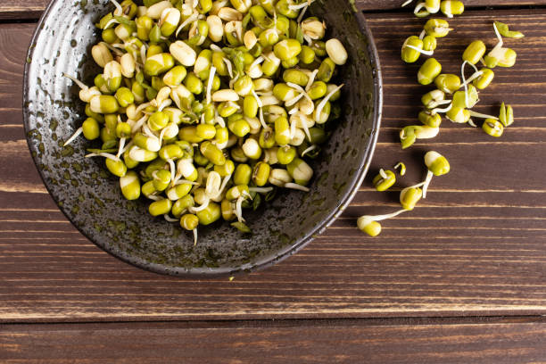 Mungo bean sprouts on brown wood stock photo