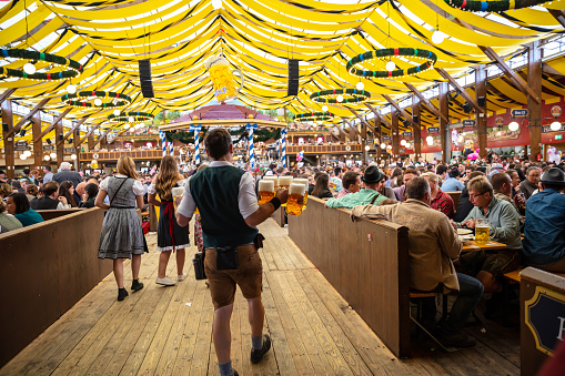 Munich, Germany, Oktoberfest, Waiter holding beers, tent interior background