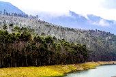 Beautiful Landscape of Munnar
