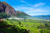 Munnar Tea Garden beside rocky mountain with blue sky