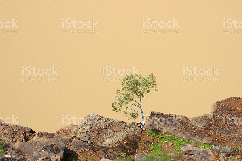 Murchison River royalty-free stock photo