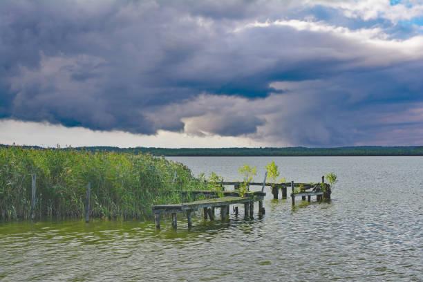 muritz national park,mecklenburg lake district,germany - nationalpark müritz stock-fotos und bilder