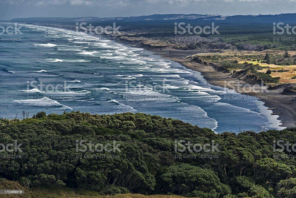 Muriwai Beach New Zealand royalty-free stock photo
