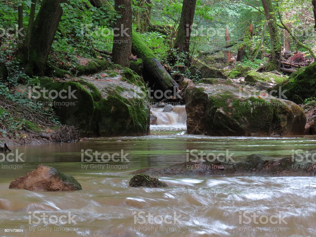 Murky Water Stock Photo Download Image Now Istock