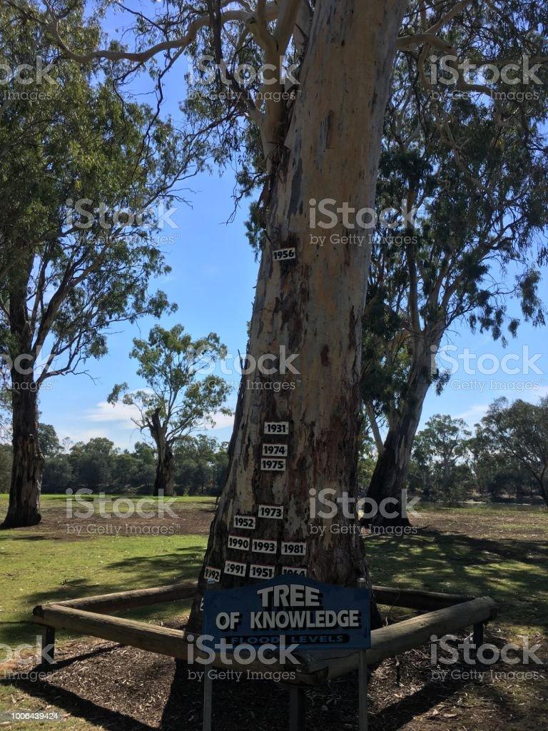 Murray river, South Australia stock photo