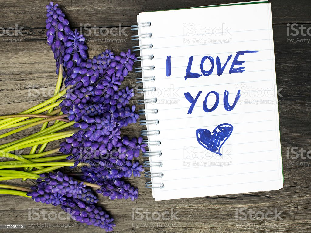 Muscari bouquet and notepad with words 'I love you' stock photo