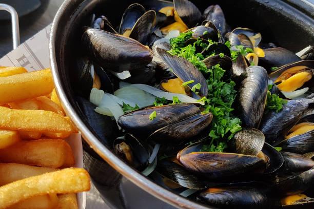 muscheln typisches essen in der bretagne, miesmuscheln und pommes frites mussel stock pictures, royalty-free photos & images