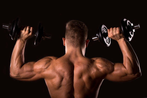 muscle bodybuilder man lifting weights stock photo