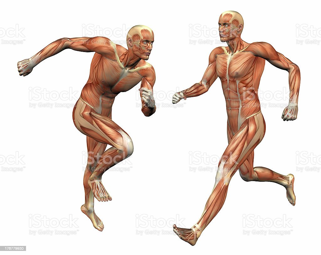 muscle man w/ clipping mask stock photo