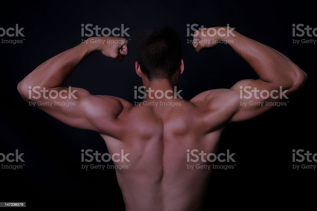 muscle stock photo