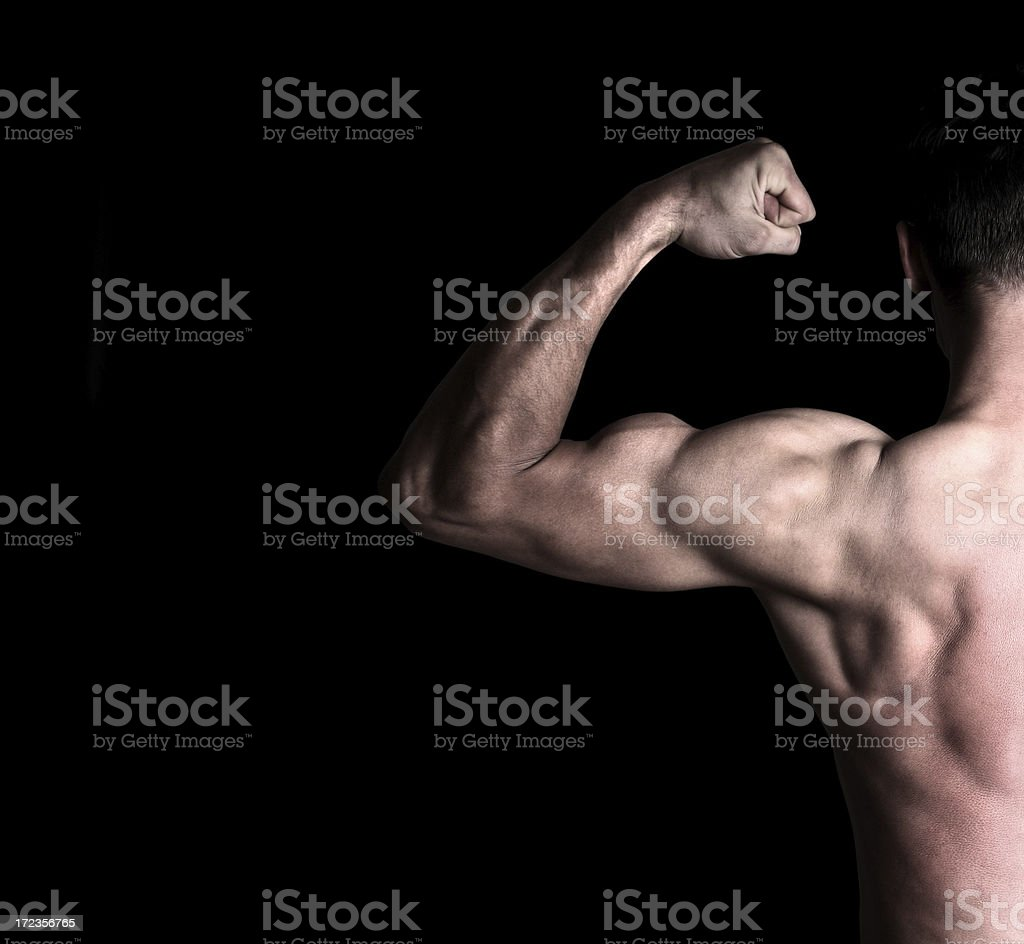 Muscle royalty-free stock photo