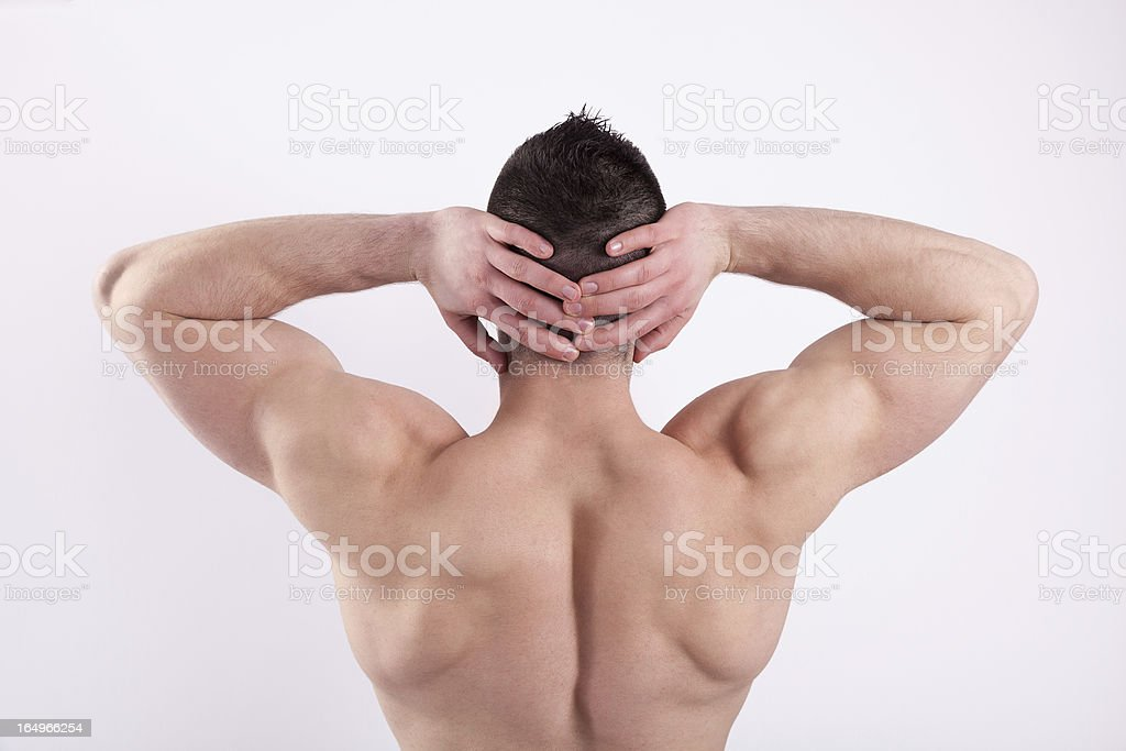 Muscles Shoulders royalty-free stock photo