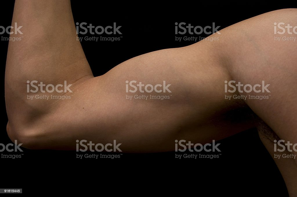 Muscular arm royalty-free stock photo