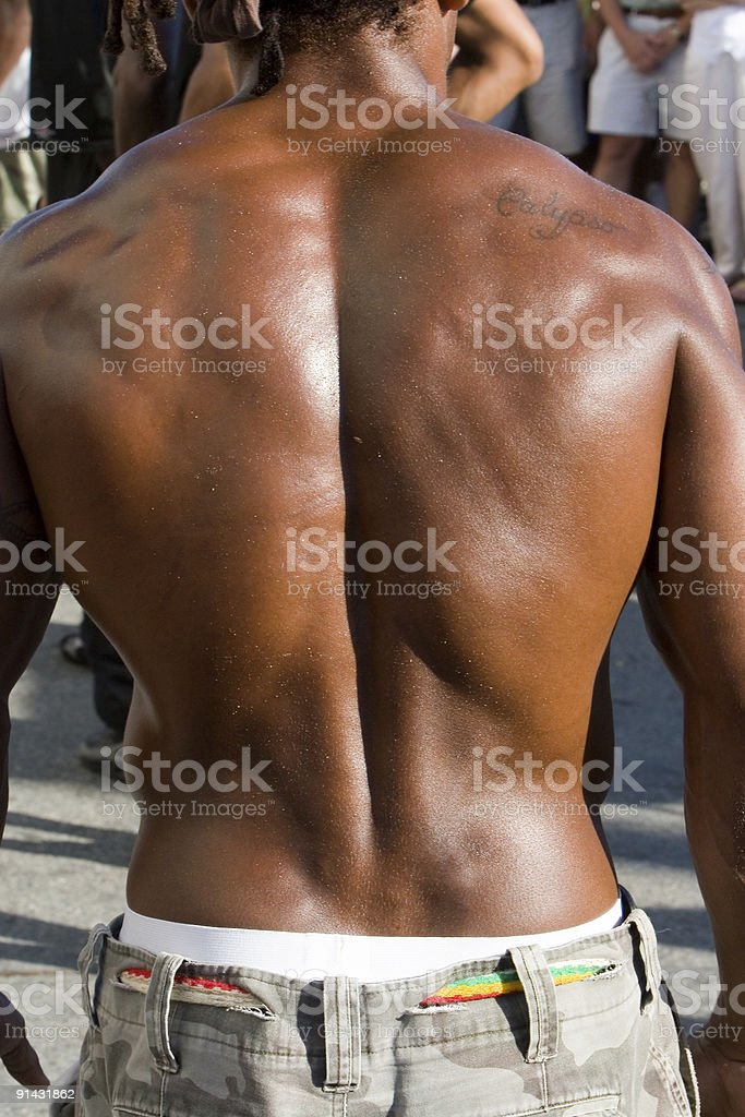 Muscular back the 'Buff Man' royalty-free stock photo