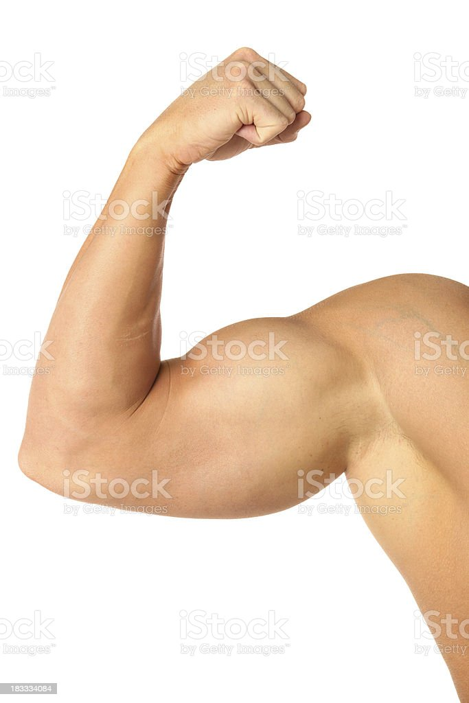 Muscular biceps stock photo