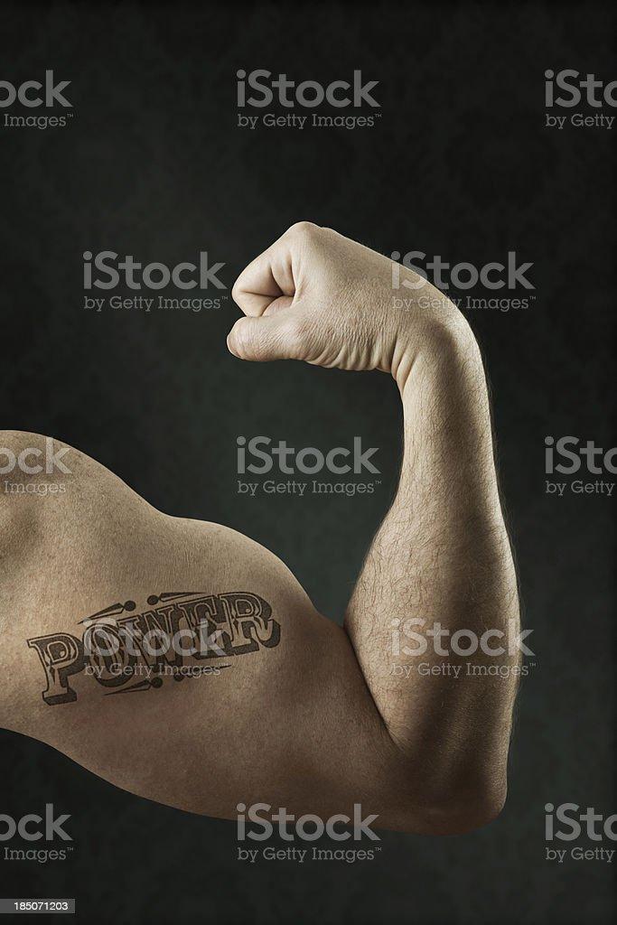 Muscular biceps stock photo