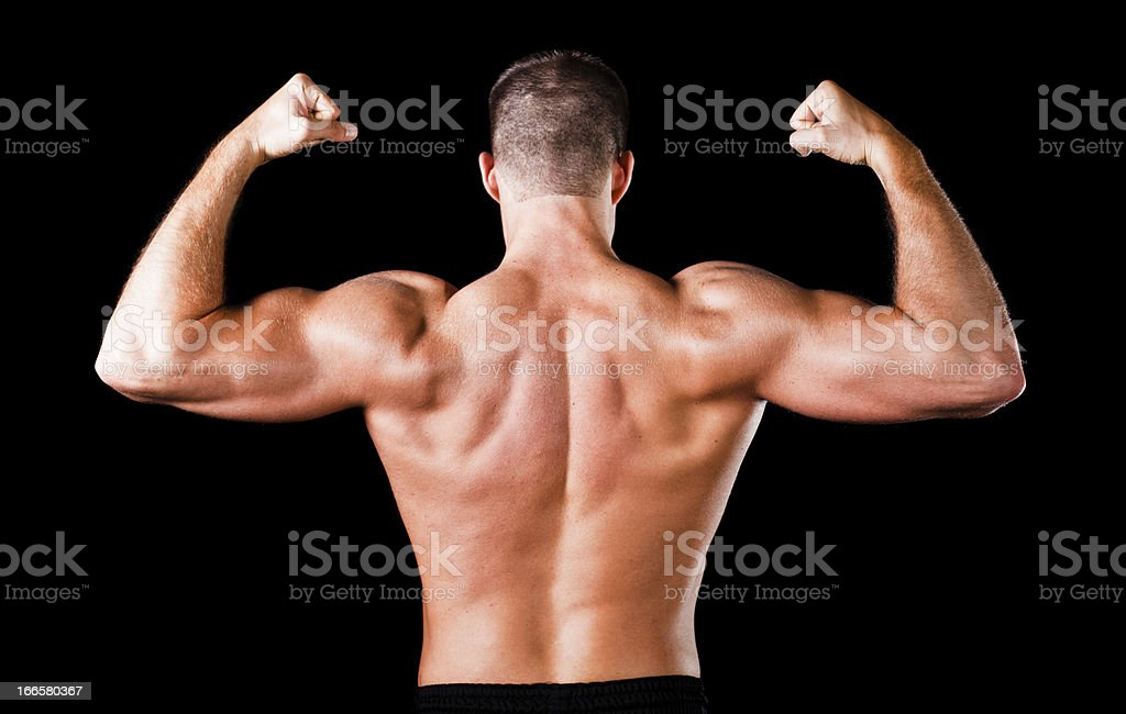 muscular bodybuilder's back royalty-free stock photo