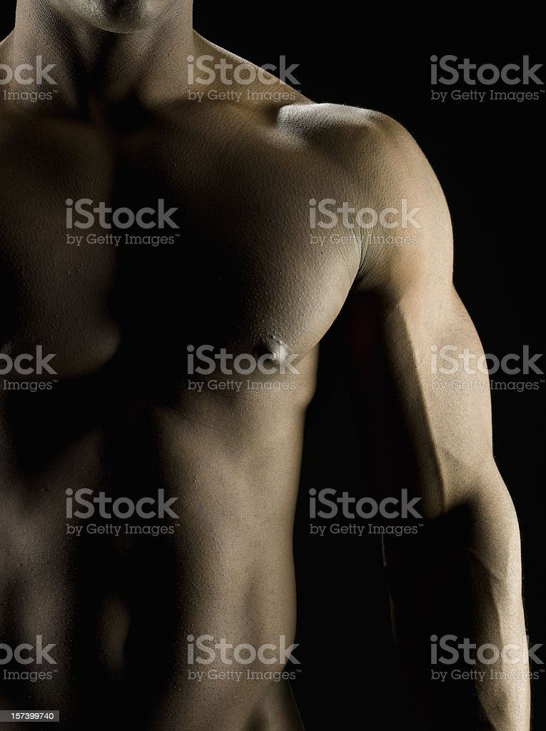 Muscular built royalty-free stock photo