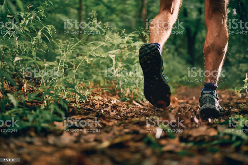 Muscular calves of a fit male jogger training for cross country forest trail race in nature park stock photo