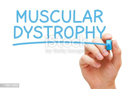 Hand writing Muscular Dystrophy with blue marker on transparent wipe board isolated on white background.