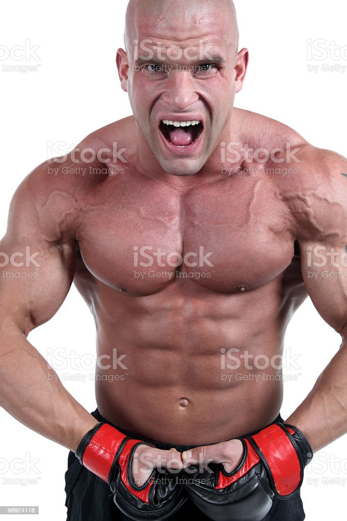 Muscular fighter portrait royalty-free stock photo