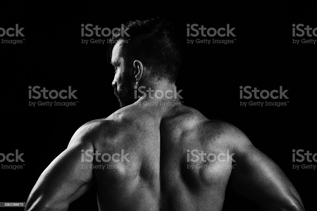 Muscular Male Back royaltyfri bildbanksbilder