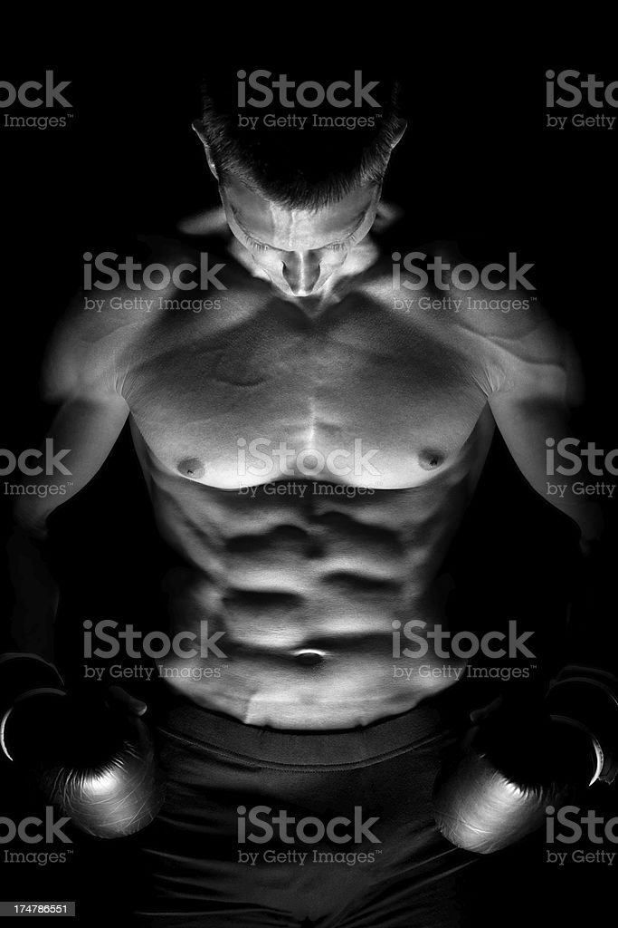 Muscular male body royalty-free stock photo