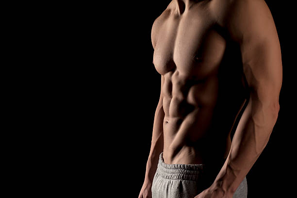Muscular male torso Muscular male torso on a black background chest torso stock pictures, royalty-free photos & images