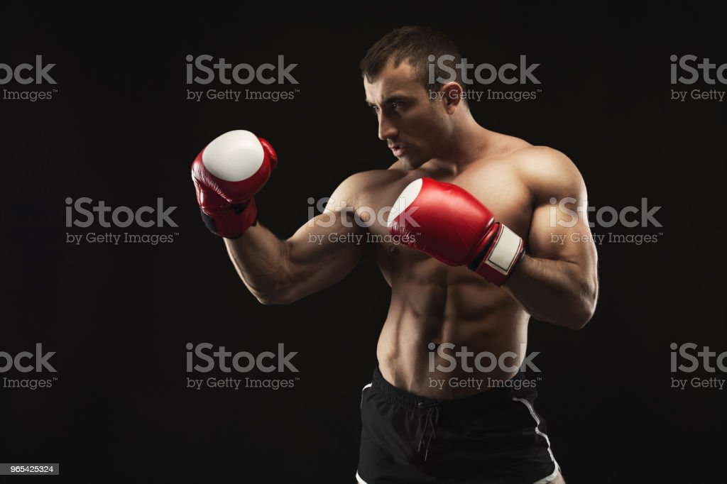 Muscular man in boxing gloves at black background royalty-free stock photo