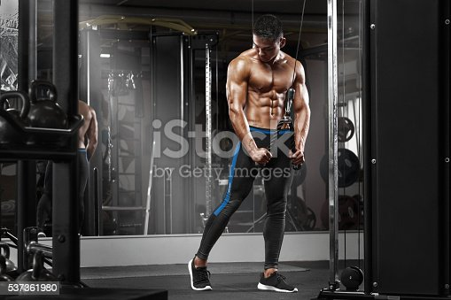 istock Muscular man working out in gym doing exercises at triceps 537361980