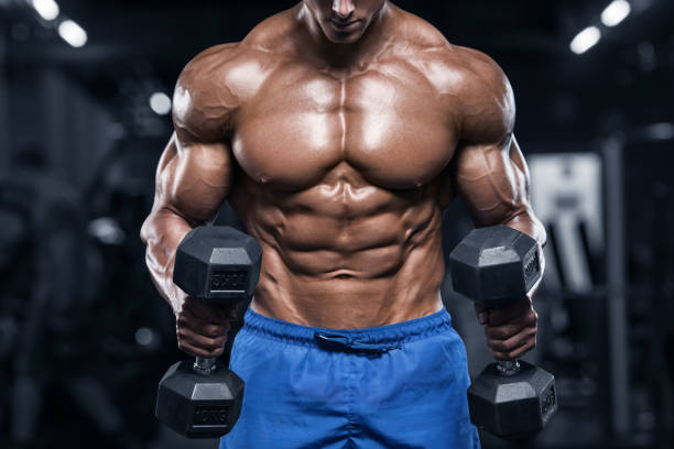 Muscular man working out in gym, strong male torso abs stock photo