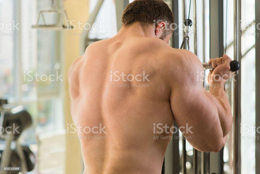 Muscular man's back. stock photo