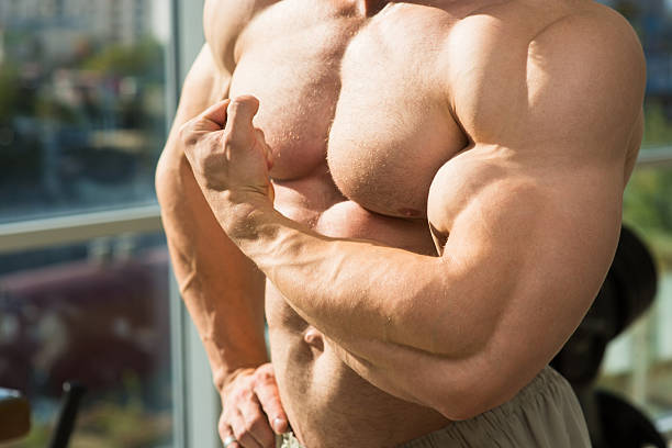 muscular-torso-and-arms-picture-id504242