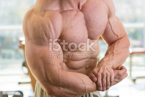 istock Muscular torso and arms. 504243530