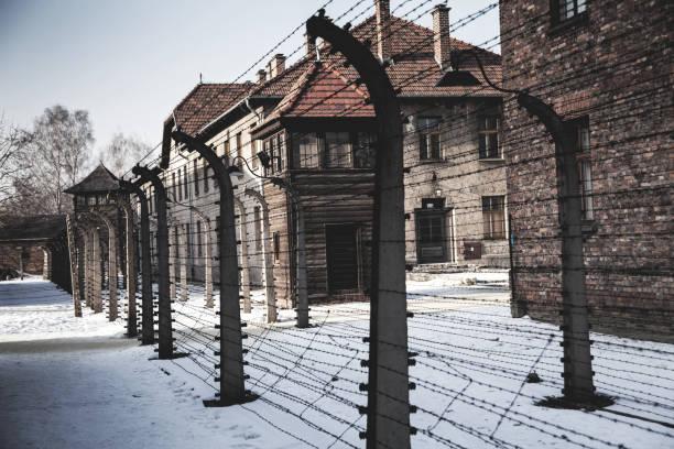 Museum Auschwitz - Birkenau. Barbed wire around a concentration camp and watchtower. – zdjęcie