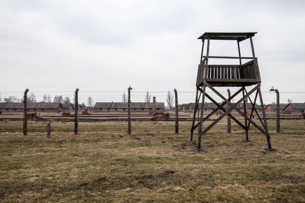 Museum Auschwitz - Holocaust Memorial Museum. Barbed wire around a concentration camp. Shed guard in the background. – zdjęcie