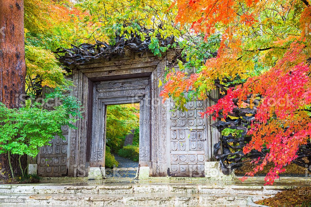 Museum in Japan During Autumn stock photo