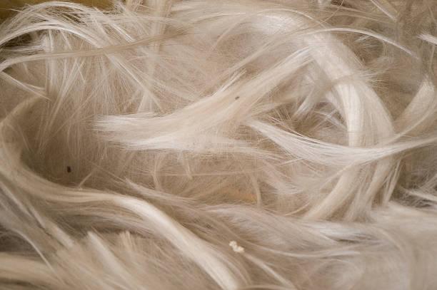 Museum mineral-Serie: Natürliche Asbest-Fasern. – Foto