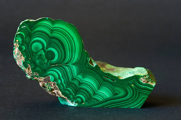 museum mineral series: polished malachite from the congo. 13cm long. - malachiet stockfoto's en -beelden
