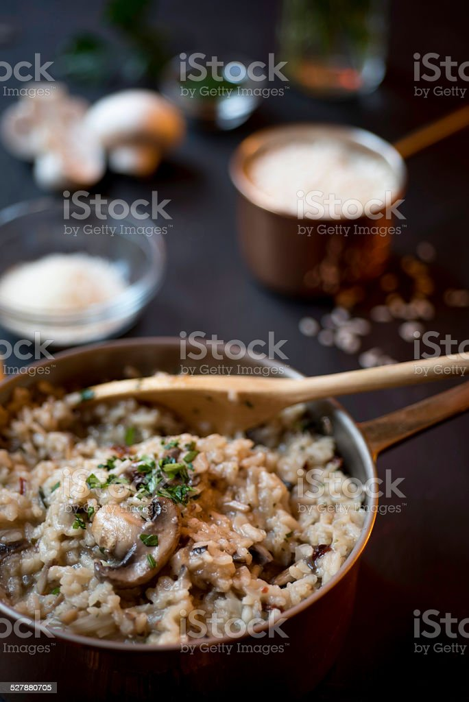 Mushroom and Sun-dried Tomato Risotto in a Copper Saucepan royalty-free stock photo