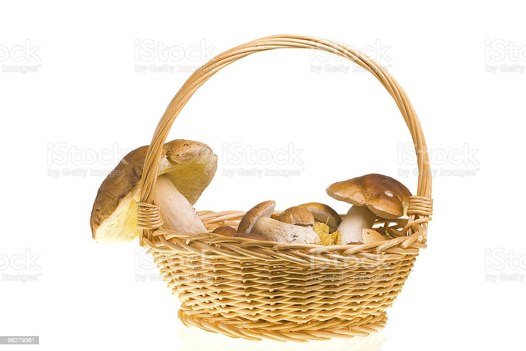 Mushroom basket royalty-free stock photo