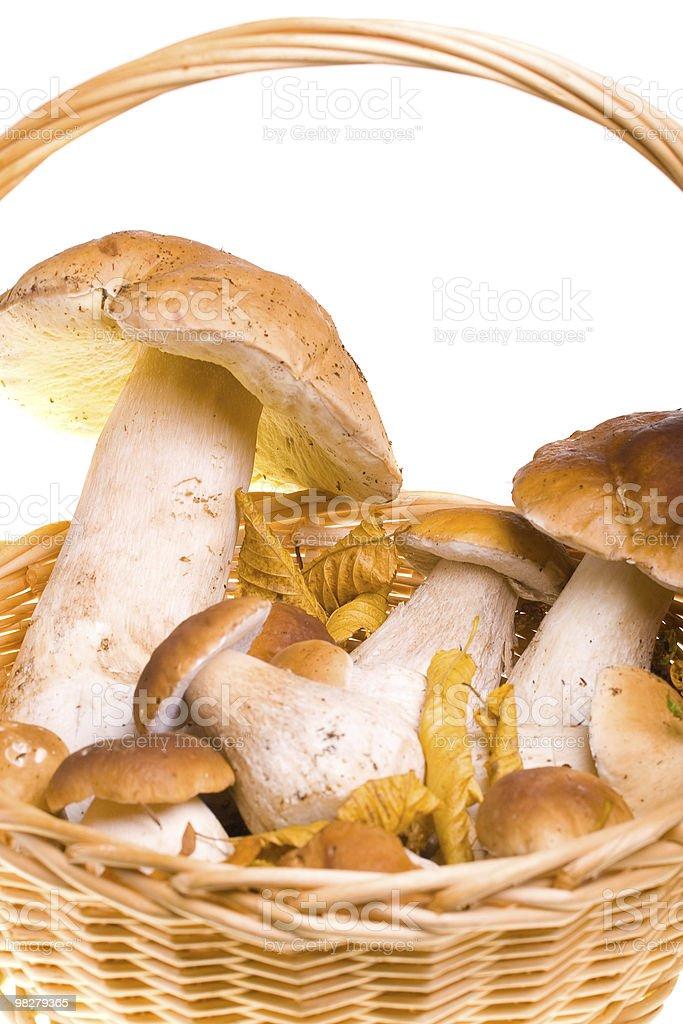 Mushroom basket royalty-free stock photo