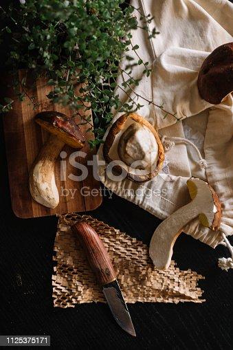 Mushroom boletus on cutting board