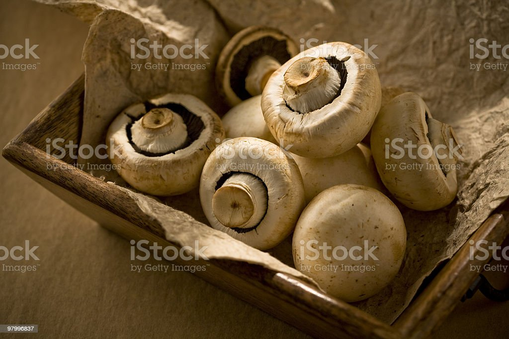 Mushroom in wood container royalty free stockfoto