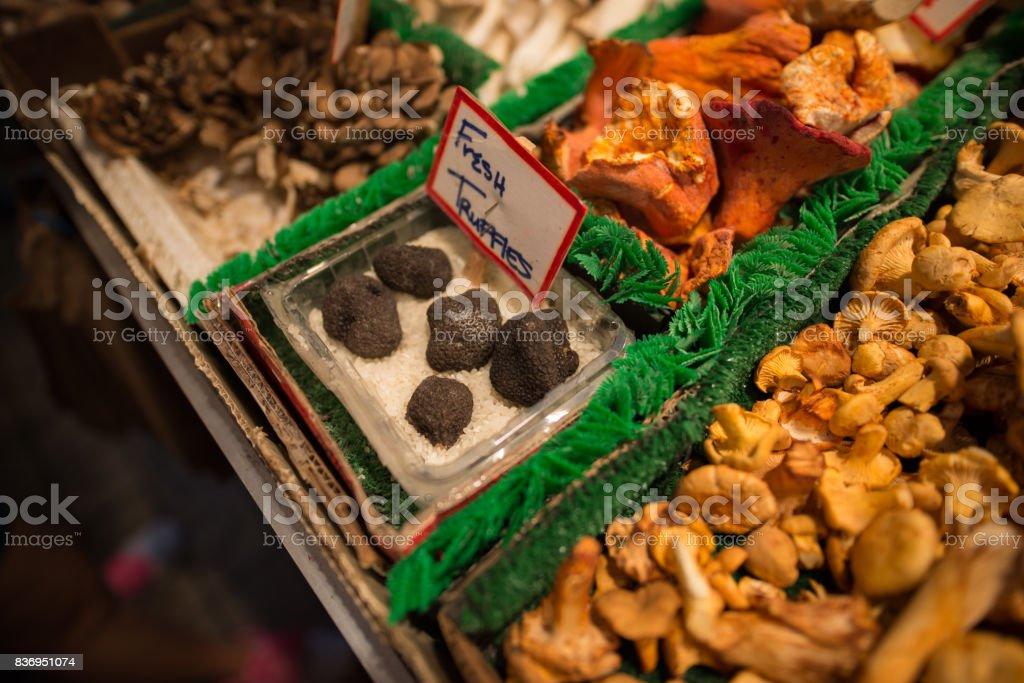 Mantar standı stok fotoğrafı
