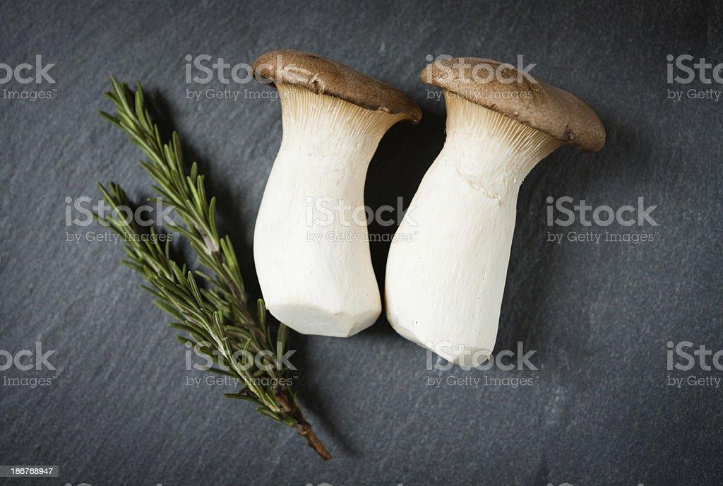 Mushrooms and Rosemary stock photo