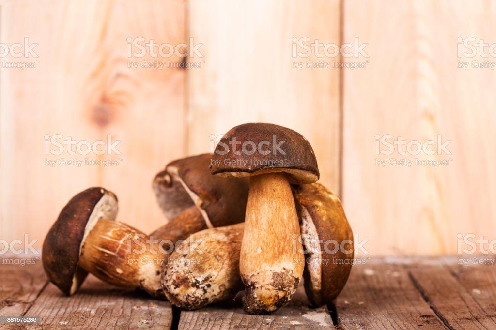 Mushrooms Boletus Edulis on a wooden surface stock photo