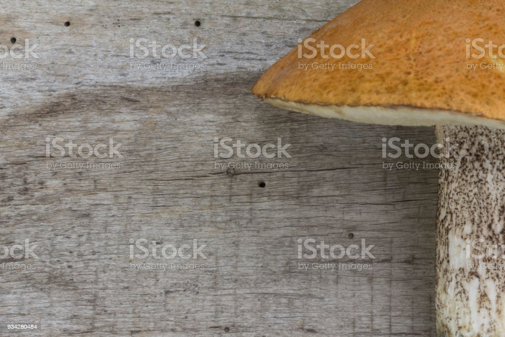 Mushrooms Brown Birch Bolete (Leccinum scabrum; Boletus scaber) on the old wooden board. Brown boletus. Background. stock photo