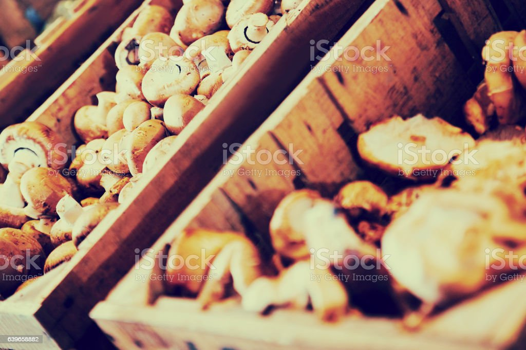 mushrooms in container stock photo