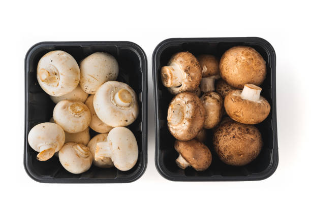 Mushrooms in Plastic Containers. Fresh Organic White and Crimini Mushrooms in a Plastic Containers on White Background, Directly from Above stock photo